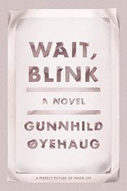WAIT, BLINK by Gunnhild Øyehaug