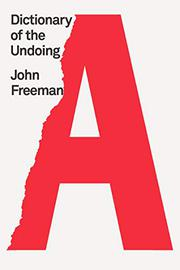 DICTIONARY OF THE UNDOING by John Freeman