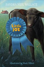 LITTLE JOE by Sandra Neil Wallace