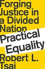 PRACTICAL EQUALITY by Robert L. Tsai