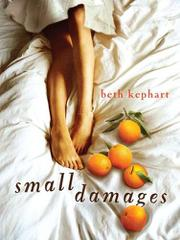 Book Cover for SMALL DAMAGES
