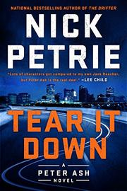 TEAR IT DOWN by Nick Petrie