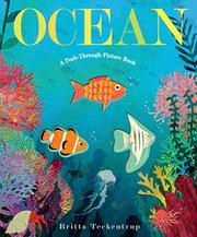 OCEAN by Patricia Hegarty