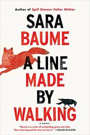 A LINE MADE BY WALKING by Sara Baume