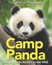 CAMP PANDA by Catherine Thimmesh