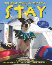 Cover art for STAY