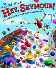 HEY, SEYMOUR! by Walter Wick