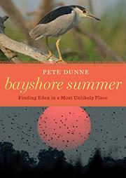 BAYSHORE SUMMER by Pete Dunne