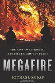 MEGAFIRE by Michael Kodas