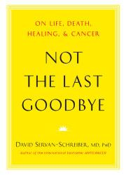 NOT THE LAST GOODBYE by David Servan-Schreiber