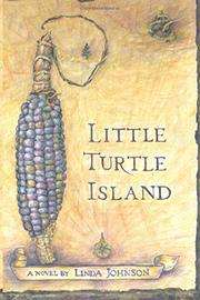 LITTLE TURTLE ISLAND by Linda  Johnson