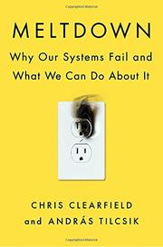 MELTDOWN by Chris Clearfield