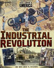 Book Cover for THE INDUSTRIAL REVOLUTION