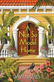 A NOT SO MODEL HOME by David James