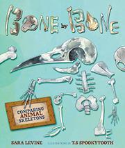 BONE BY BONE by Sara Levine