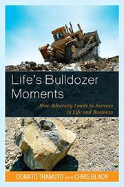 LIFE'S BULLDOZER MOMENTS by Donato Tramuto