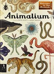 ANIMALIUM by Jenny Broom