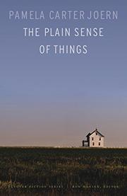 THE PLAIN SENSE OF THINGS by Pamela Carter Joern