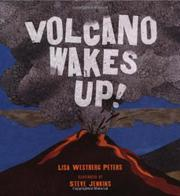 Cover art for VOLCANO WAKES UP!