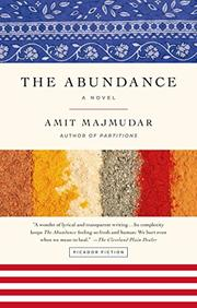 THE ABUNDANCE by Amit Majmudar