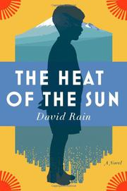 Book Cover for THE HEAT OF THE SUN