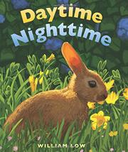 DAYTIME NIGHTTIME by William Low