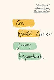 GO, WENT, GONE by Jenny Erpenbeck