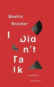 I DIDN'T TALK by Beatriz Bracher
