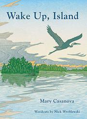 WAKE UP, ISLAND by Mary Casanova