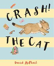 CRASH! THE CAT by David McPhail