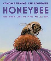 HONEYBEE by Candace Fleming