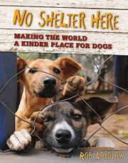 NO SHELTER HERE by Rob Laidlaw