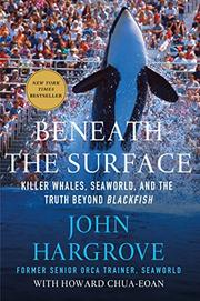BENEATH THE SURFACE by John Hargrove