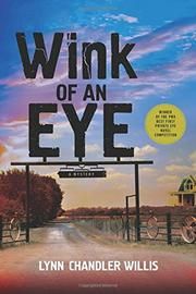 WINK OF AN EYE by Lynn Chandler Willis