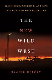 THE NEW WILD WEST by Blaire  Briody