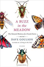 A BUZZ IN THE MEADOW by Dave Goulson