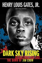 DARK SKY RISING by Henry Louis Gates Jr.