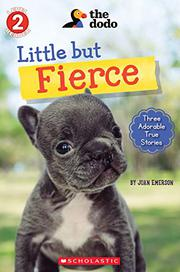 LITTLE BUT FIERCE by Joan Emerson