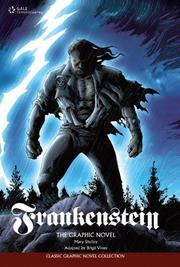 FRANKENSTEIN by Brigit Viney