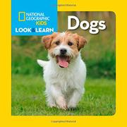 DOGS by National Geographic Kids