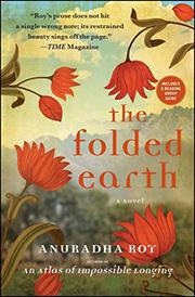 Book Cover for THE FOLDED EARTH