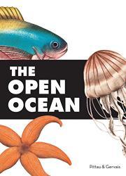 THE OPEN OCEAN by Francesco Pittau