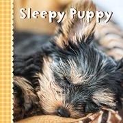 SLEEPY PUPPY by Sterling Publishing