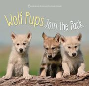 WOLF PUPS JOIN THE PACK by American Museum of Natural History