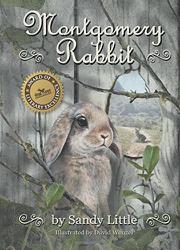 Montgomery Rabbit by Sandy Little