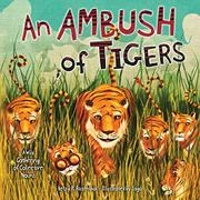 AN AMBUSH OF TIGERS by Betsy R. Rosenthal
