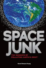 SPACE JUNK by Karen Romano Young