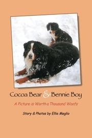 Cocoa Bear & Bennie Boy by Ellie Meglio