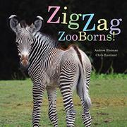 ZIGZAG ZOOBORNS! by Andrew Bleiman