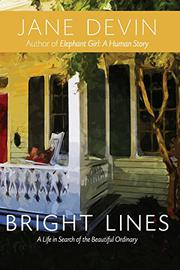 BRIGHT LINES by Jane Devin